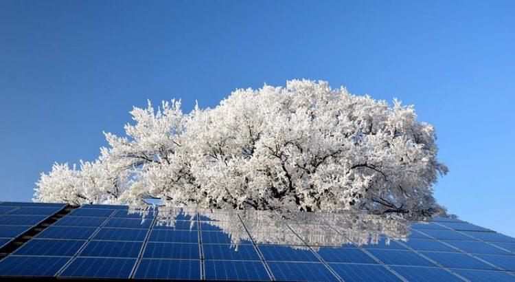 Instalacja fotowoltaiczna na tle kwitnącego drzewa, biała energia