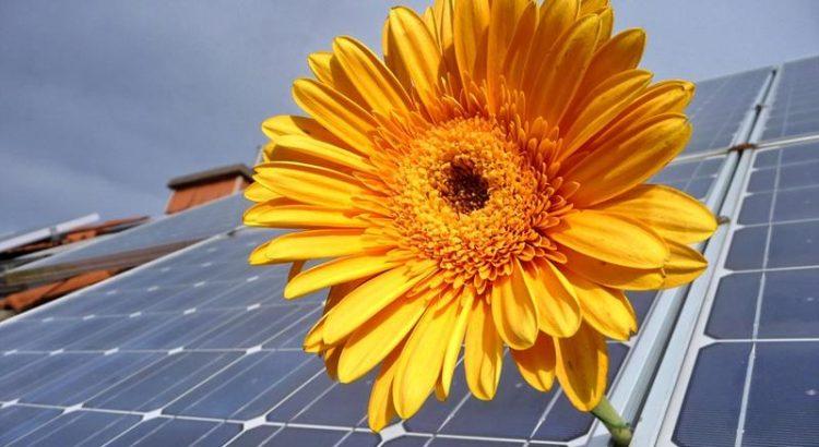 Ogniwo słoneczne, OZE, panel fotowoltaiczny